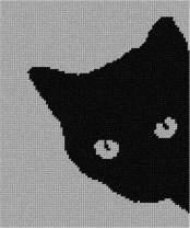 pepita Cat Around Corner Needlepoint Kit