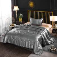 A Nice Night Satin Silky Soft Quilt Sexy Luxury Super Soft Microfiber Bedding Comforter Set, Light Weighted (Silver, Twin(68-by-88-inches))
