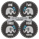 Months In Motion Gender Neutral Baby Month Stickers - Monthly Milestone Sticker for Boy or Girl - Infant Photo Prop for First Year - Shower Gift - Newborn Keepsakes - Unisex- Chalkboard- Elephants