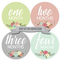 Months In Motion Baby Monthly Milestone Stickers - First Year Set of Baby Month Stickers for Photo Keepsakes (Girl Set of 20)