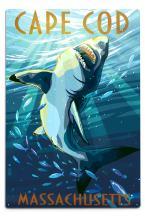 Lantern Press Cape Cod, Massachusetts, Great White Shark 46463 (6x9 Aluminum Wall Sign, Wall Decor Ready to Hang)