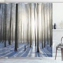 """Ambesonne Woodland Shower Curtain, Wintertime Forest on a December Morning Snowy Sunshine Shadows Trunk, Cloth Fabric Bathroom Decor Set with Hooks, 70"""" Long, Bluegrey"""