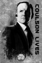 "Trends International Agents of S.H.I.E.L.D. Colsen Wall Poster 22.375"" x 34"""