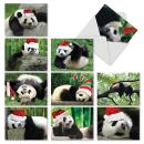 Boxed Set of 10 'Holiday Pooped Pandas' Blank Christmas Greeting Cards - Cute Tired Pandas with Santa Hats Holiday Notes 4 x 5.12 inch, Assorted Animal Greeting Cards with Envelopes M6471XSB