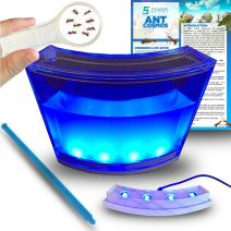 Ant Habitat W/ LED Light. Enjoy A Magnificent Live Ecosystem At Your Home. Suitable For Kids & Adults. The Best Ant Farm Equipped W/ Enhanced Blue Gel. Evviva Educational & Learning Science Games