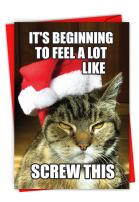 Screw This - Box of 12 Cat Christmas Note Cards with Envelopes (4.63 x 6.75 Inch) - Grouchy Feline, Funny Pet Season's Greetings Card - Humorous Xmas Gift, Happy Holidays Notecard C6225XSG