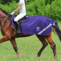 Harrison Howard Climax Horse Fly Rug Soft Mesh Air Permeability Fly Exercise Sheet Fly Protection for Horse