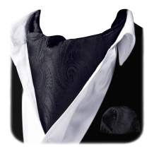 HISDERN Cravat Ascot Tie and Pocket Square Set for Men Wedding Cravat Scarf