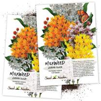 Seed Needs, Autumn Blaze Milkweed Mix (Asclepias Species) Twin Pack of 100 Seeds Each