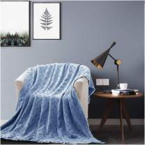 KASENTEX Cozy Soft 100% Cotton Stone-Washed All Season Decorative Throw Blanket Knitted with Fringes for Couch, Sofa, Bed, wrap-Around, Indoor/Outdoor(Blue, 60x50in, Knitted Crosshatch Design)