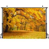Dudaacvt 7x5ft Autumn Scenery Photography Backdrop Forest Trees Thanksgiving Maple Leaves Baby Shower Birthday Cake Table Decorations Banner Photo Booth D181