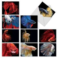 10 'Fancy Fins' Assorted Note Cards with Envelopes 4 x 5.12 inch, Blank Greeting Cards Featuring Betta Fish with Colorful Fins, Stationery for Birthdays, Holidays, Baby Showers, Thank You M1630BN