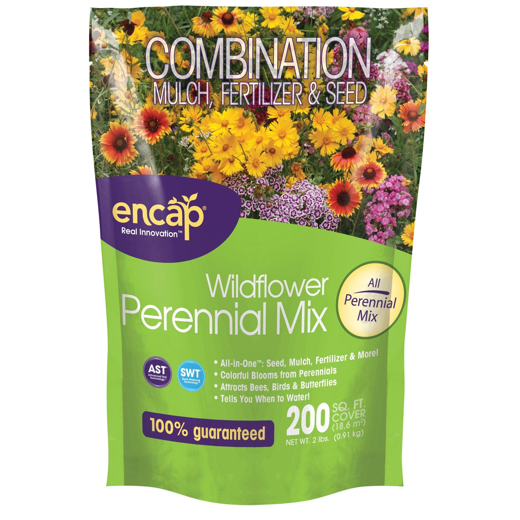 Encap Wildflower Perennial Mix - 2lb