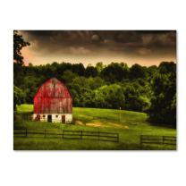 Summer Evening on The Farm  by Lois Bryan, 22 by 32-Inch Canvas Wall Art
