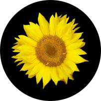 TIRE COVER CENTRAL Single Sunflower Spare Tire Cover (Select tire Size/Back up Camera Option in menu) Custom Sized to Any Make/modelfor 33x12.50x_