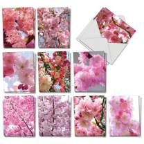 The Best Card Company - 20 Assorted Blank Plant Cards Boxed (4 x 5.12 Inch) (10 Designs, 2 Each) - Cherry Blossoms AM6861OCB-B2x10