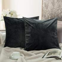 NTBAY Zippered Velvet Square Throw Pillow Covers, 2 Pack Super Soft and Luxury Decorative Cushion Cases, 16 x 16 Inches, Charcoal Grey
