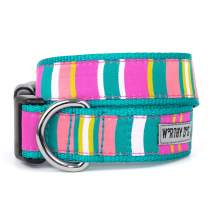 The Worthy Dog Fiesta Stripe Pattern Designer Adjustable and Comfortable Nylon Webbing, Side Release Buckle Collar for Dogs - Fits Small, Medium and Large Dogs, Teal/Multi Color