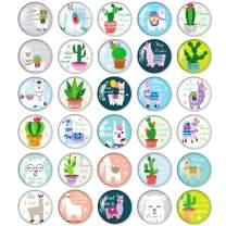 UBAOXIN Inspirational Magnets for Fridge Llama Motivational Magnet Cactus Decorative for School Office Whiteboard