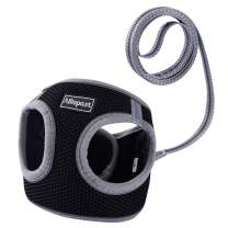 Allispast Soft Mesh Step-in Lightweight Kitten Harness and Leash for 9-12 Pounds Cat