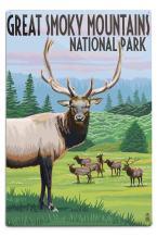 Lantern Press Great Smoky Mountains National Park, Elk Herd (12x18 Aluminum Wall Sign, Wall Decor Ready to Hang)