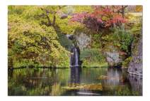 Tokyo, Japan - A Waterfall Surrounded by Autumn Trees & Leaves 9003084 (Premium 1000 Piece Jigsaw Puzzle for Adults, 20x30, Made in USA!)