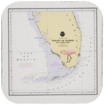 3dRose Print of Nautical Map of South Florida with Flamingo - Soft Coasters, Set of 8 (CST_214253_2)