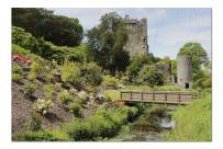 Ireland - Blarney Castle Park and Bridge - Photography A-92061 (Premium 1000 Piece Jigsaw Puzzle for Adults, 19x27, Made in USA!)