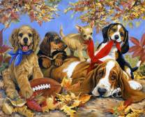 Puzzles for Adults 1000 Piece Jigsaw Puzzles 1000 Pieces for Adults Kids Large Puzzle Game Toys Gift Cute Dogs