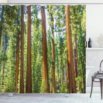 """Ambesonne National Parks Shower Curtain, View of Tree Branches in Scenic Springtime Conifers Sequoia Art Prints, Cloth Fabric Bathroom Decor Set with Hooks, 70"""" Long, Green Brown"""