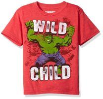 Marvel Little Boys' the Incredible Hulk T-Shirt