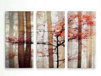 Renditions Gallery Orange Awakening 3 Panel Wall Art for Home, Office, Bedroom 32X48