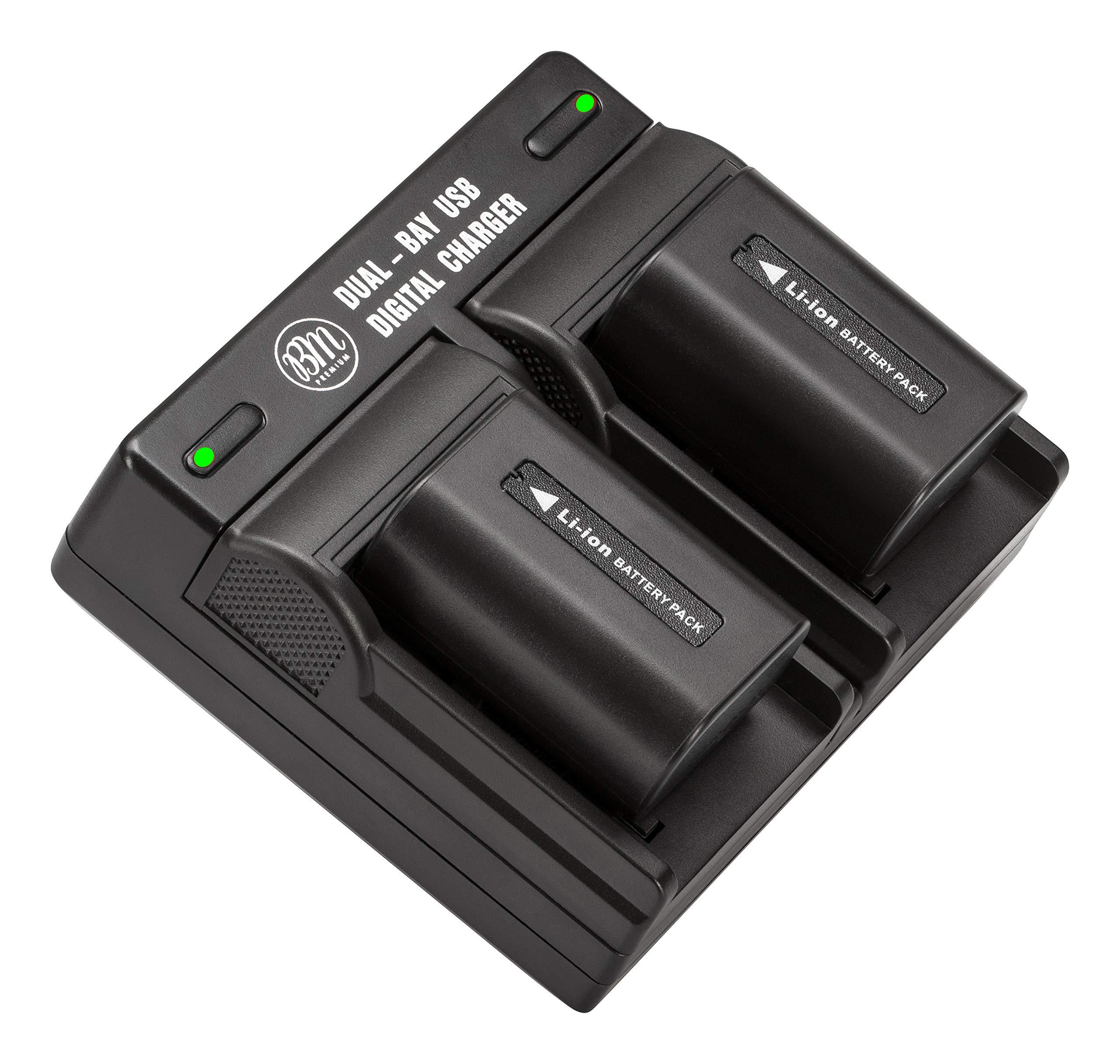 BM Premium 2 NP-FV50 Batteries & Dual Battery Charger for Sony FDR-AX53, HDR-CX675/B, CX455/B, CX580V, CX760V, PJ380, PJ430V, PJ540, PJ650V, PV710V, PJ670, PV790V, PJ810, FDR-AX33, FDR-AX100 Camcorder