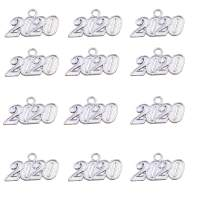 Aokbean Pack of 12 Alloy 2019 Year Charm Graduation Charm for DIY Crafts Graduation Tassel Grad Day (Gold) (Silver 2020, Large)