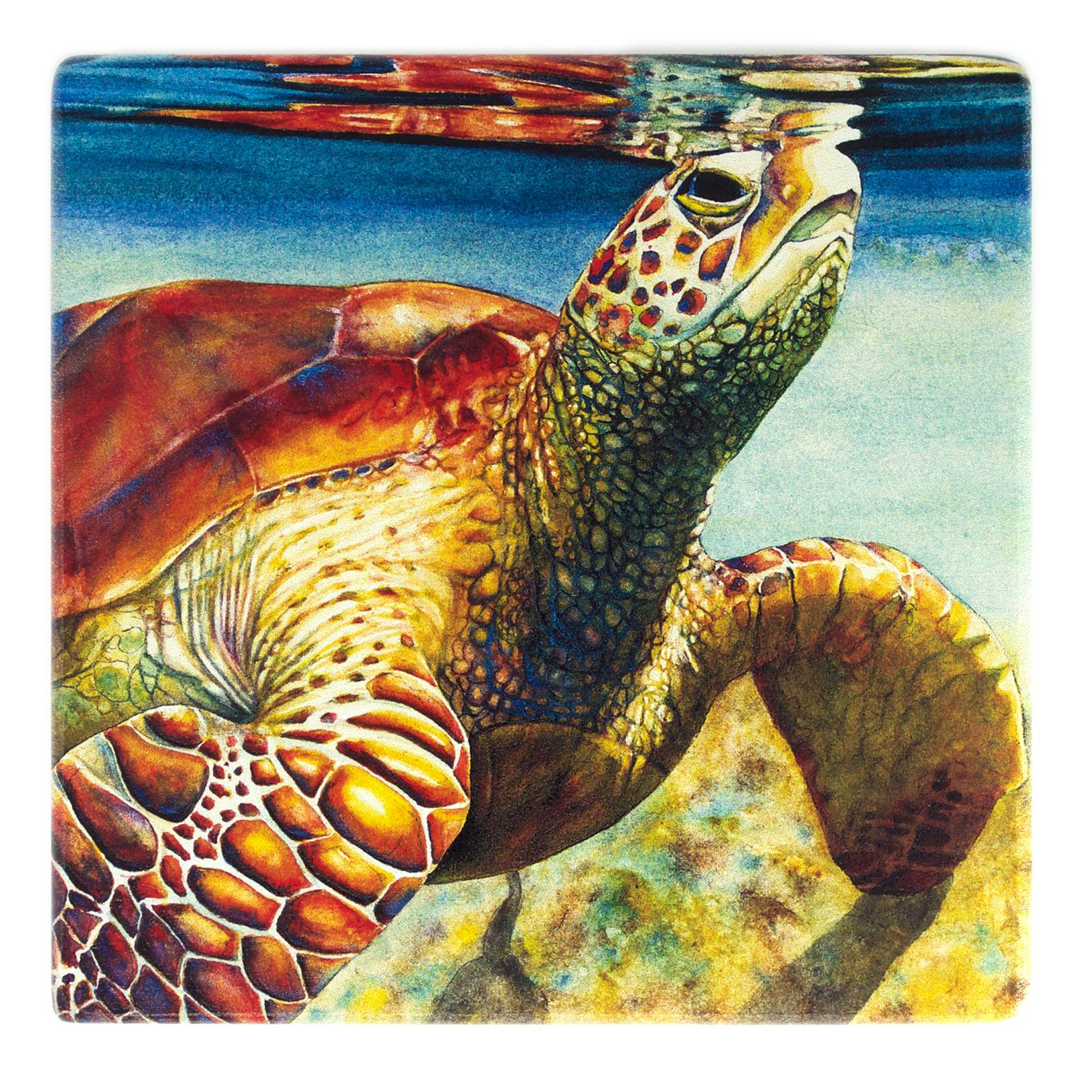 Sea Turtle Surfacing Wooden Coaster - Watercolor Art by Colleen Nash Becht