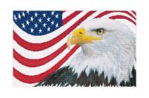 Thea Gouverneur - Counted Cross Stitch Kit - Embroidery Kit - 550A - Pre-Sorted DMC Threads - American Eagle - Aida - 17.3 x 10.6inch - DIY Kit