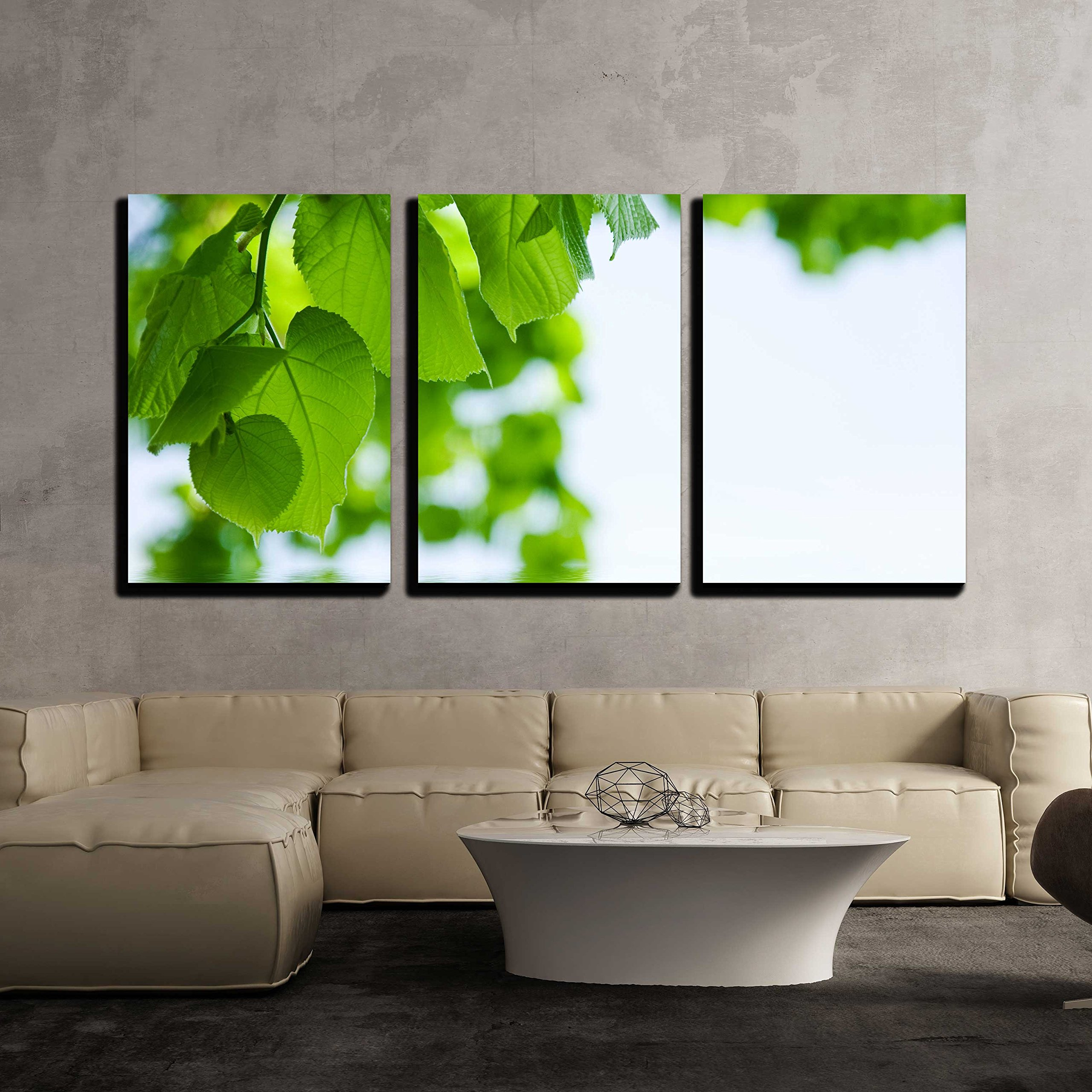 "wall26 - 3 Piece Canvas Wall Art - Nature Background - Lime and Water Relflexion - Modern Home Decor Stretched and Framed Ready to Hang - 16""x24""x3 Panels"