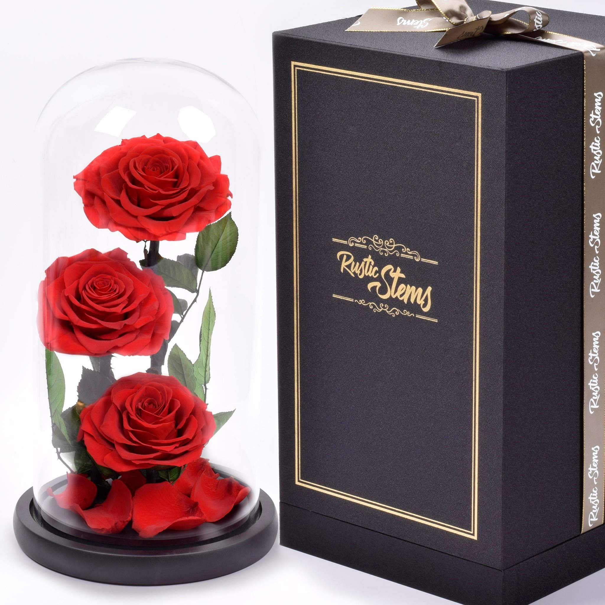 RUSTIC STEMS – Luxury Preserved Rose Real Fresh Flower Forever Beauty and The Beast Eternal in Glass Dome Handmade Gifts for Mom Women Wife Girlfriend Birthday Anniversary (Luxury Red)