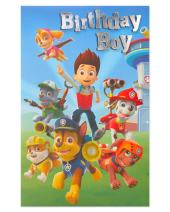 American Greetings Birthday Card for Boy (Paw Patrol)