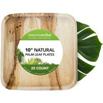 Stock Your Home 10 Inch Palm Leaf Plates (25 Count) - Large Eco Friendly Plates - Biodegradable & Compostable - Rustic Plates for Weddings, Camping, Picnics, Main Course, Meat, Fish, Heavy Meals