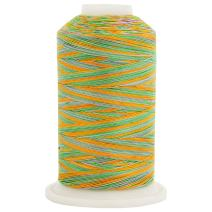 Threadart Variegated 100% Cotton Thread 600M   For Quilting, Sewing, and Serging   Color 2643 Fields   40/3wt   22 Colors Available