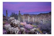 Saguaro National Park, Arizona - Sunset and Colorful Flowers 9001899 (Premium 1000 Piece Jigsaw Puzzle for Adults, 19x27, Made in USA!)