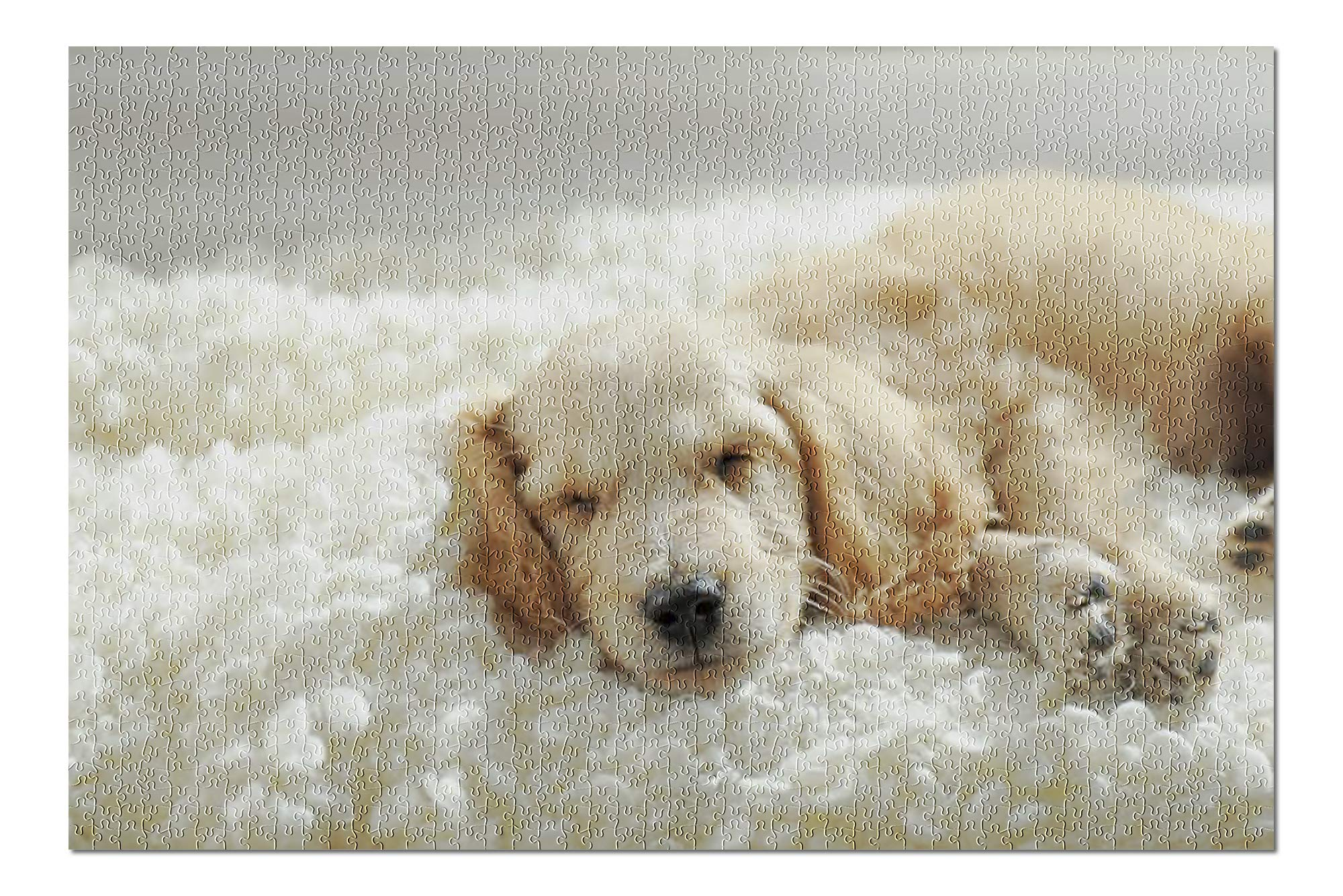 Cute English Cocker Spaniel Puppy Sleeping on a Fluffy White Blanket 9019748 (Premium 1000 Piece Jigsaw Puzzle for Adults, 20x30, Made in USA!)