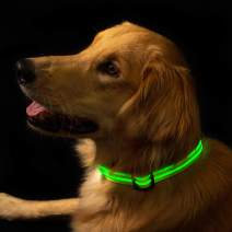 Fur Bebe LED Lighted Dog Collar for Night Time Walking - Super Bright, USB Rechargeable Battery, Great for Small Medium Large Dogs