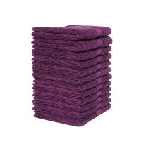 "Bumble Luxury Thick 12 Pack Wash Cloth/ 13"" x 13"" Premium Wash Cloths/Ultra Soft, Highly Absorbent 800 GSM Heavy Weight Combed Cotton (Violet)"