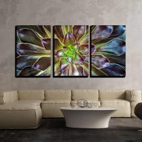 """wall26 - 3 Piece Canvas Wall Art - Cactus Flower Macro Vivid Texture Color - Modern Home Art Stretched and Framed Ready to Hang - 24""""x36""""x3 Panels"""