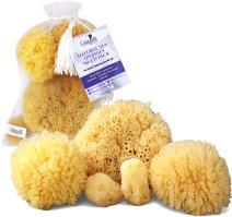 Real Natural Sea Sponges Multipack - 5pc Spa Gift Set in Premium Bag, Kind on Skin, for Bath Shower Facial Cleansing, Eco Friendly, Pamper Moms Brides Girlfriends & Teens (5 Pack Standard Packaging)