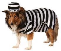 Rubie's Pet Costume, Large, Prisoner