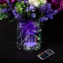 Lavish Home Waterproof LED Light Underwater Submersible, Multicolor, Battery Operated with Remote-10-LED-Decor for Parties, Weddings