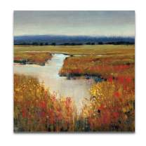 WEXFORD HOME Marsh Land Gallery Wrapped Canvas Wall Art, 32x32